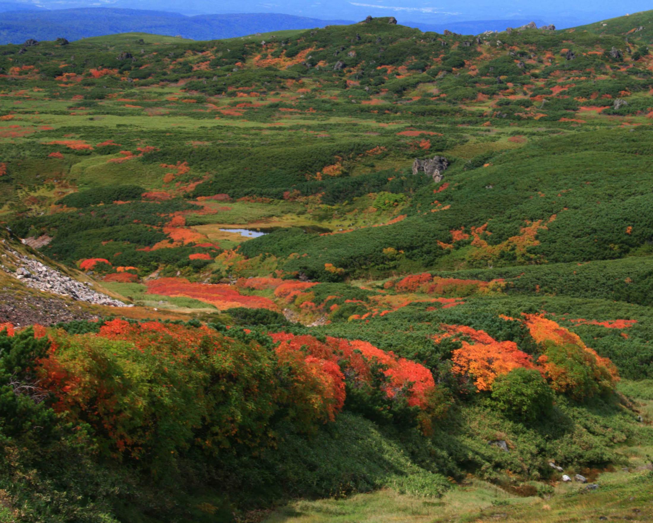 Mt. Resort Asahidake
