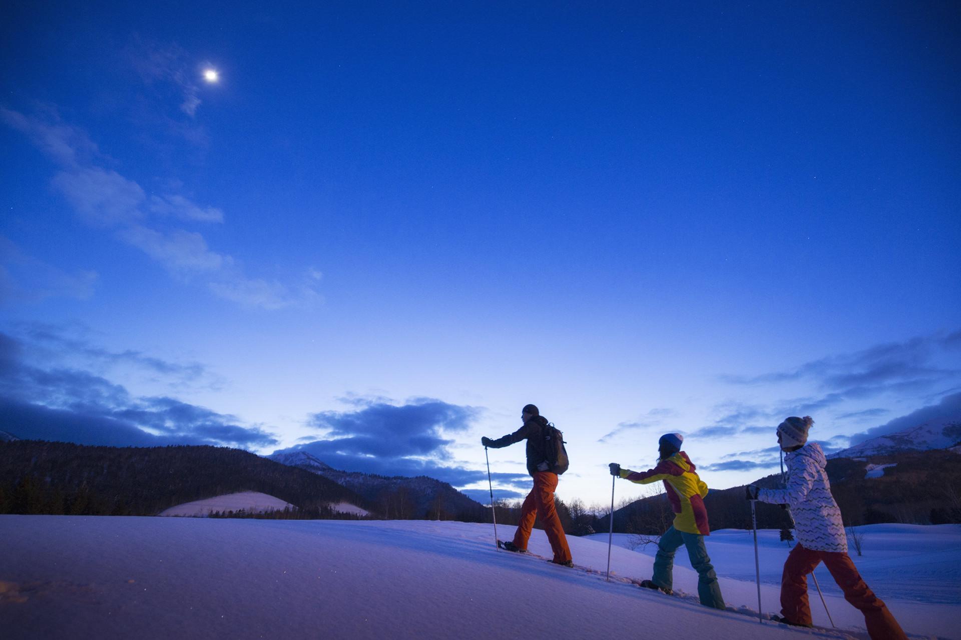 Luxurious Night Snow Picnic