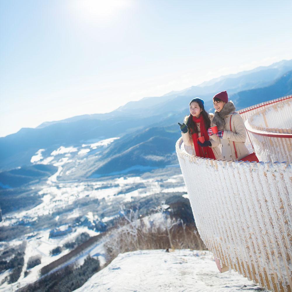 terrace of frost tree|hoshino resorts tomamu